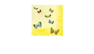 "Feestpakket ""Papillons"""